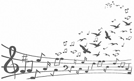 Music Staff With Birds