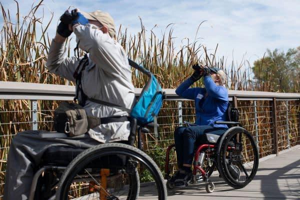 Birders In Wheelchairs